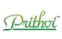 Prithvi Group